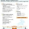 Programma Pesticidi 2019