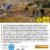 Pulizia a Foce Bevano 10 marzo