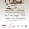 CartolinaFronteretro_10x15_Po_Festival_2019_VERDE_2-1