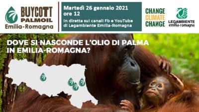 Buycott Palm Oil_ER
